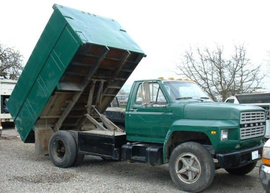 1981 Ford F1700 Truck Picture